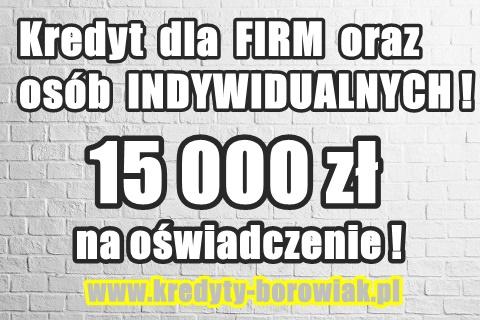 15 000 Zł Na Oświadczenie Dla Firm I Osób Fizycznych!