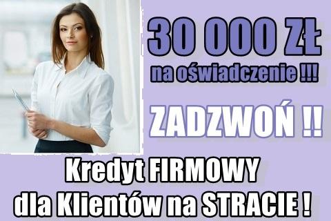 Kredyt Dla Firm Bez Dochodu (ze Stratą)!z Brakiem Zdolności Kredytowej! 30 000 Pln!