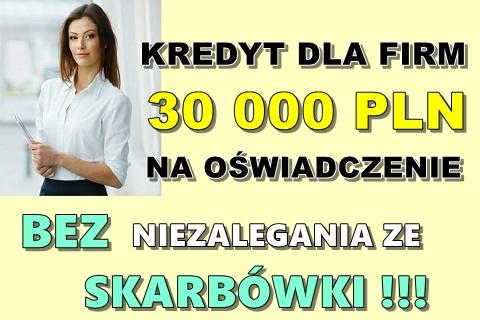 Kredyt Dla Firm Na Oświadczenie Do 30 000 Pln Bez Niezalegania Ze Skarbówki!
