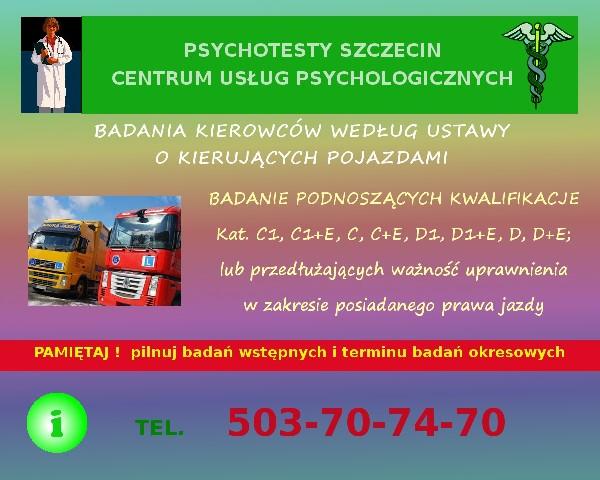 Psychotesty Szczecin. Centrum Usług Psychologicznych Wojska Polskiego 11 3