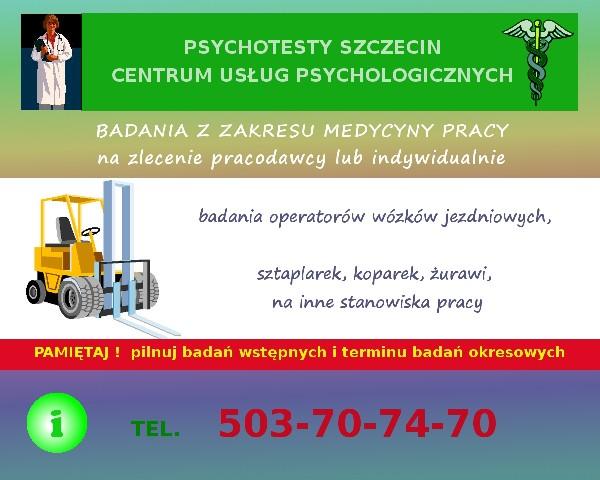 Psychotesty Szczecin. Centrum Usług Psychologicznych Wojska Polskiego 11 5